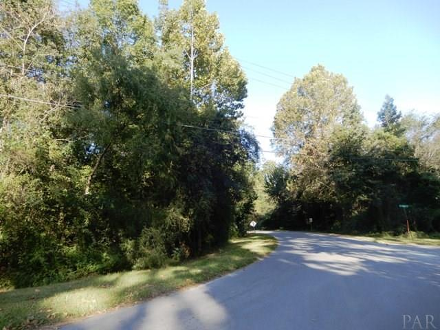 300 E Pond St, Century, FL 32535 (MLS #528193) :: Coldwell Banker Seaside Realty