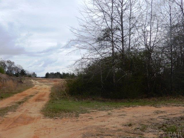 6500 Blk N Pine Barren Rd, Century, FL 32535 (MLS #532589) :: Coldwell Banker Seaside Realty