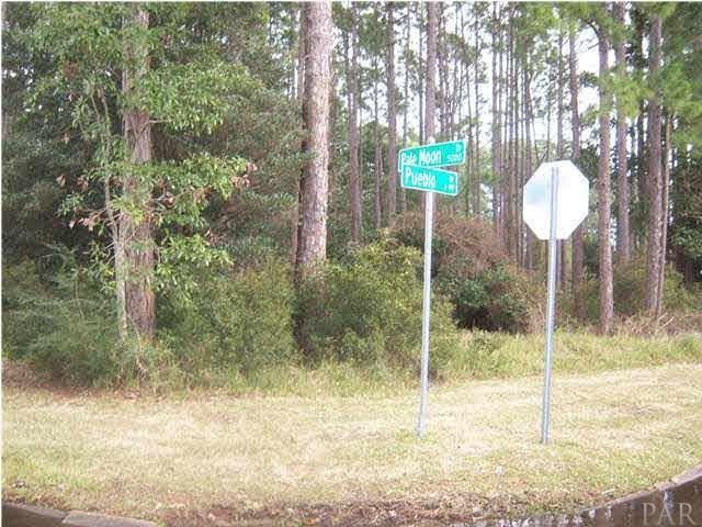 5179 Pale Moon Dr, Pensacola, FL 32507 (MLS #533048) :: Levin Rinke Realty
