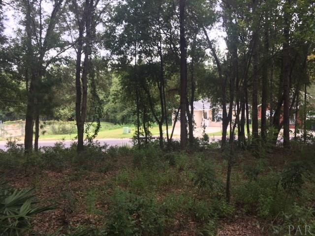 0 Creek Station Dr, Pensacola, FL 32504 (MLS #541913) :: Levin Rinke Realty