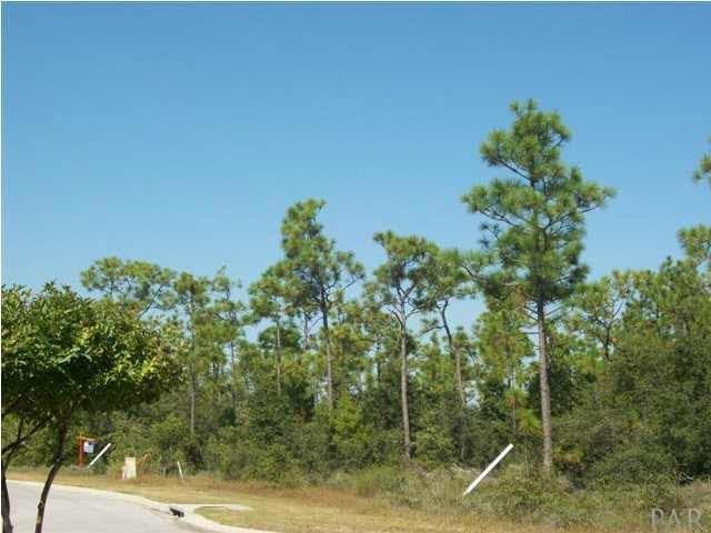 10550 Squall Line Rd, Pensacola, FL 32501 (MLS #543865) :: Levin Rinke Realty