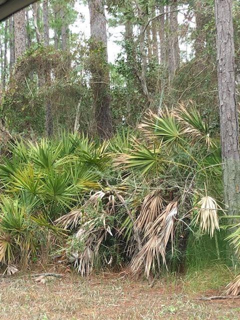 16604 N Shore Cv, Pensacola, FL 32507 (MLS #549640) :: ResortQuest Real Estate