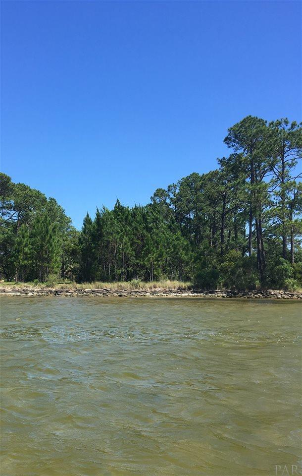 14314 River Rd - Photo 1