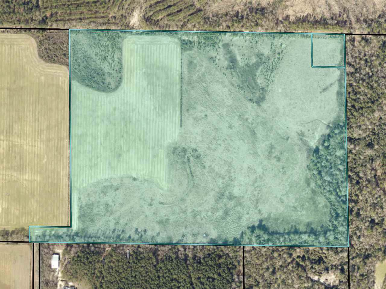 53 Acre Parcel Sid Hayes Rd - Photo 1