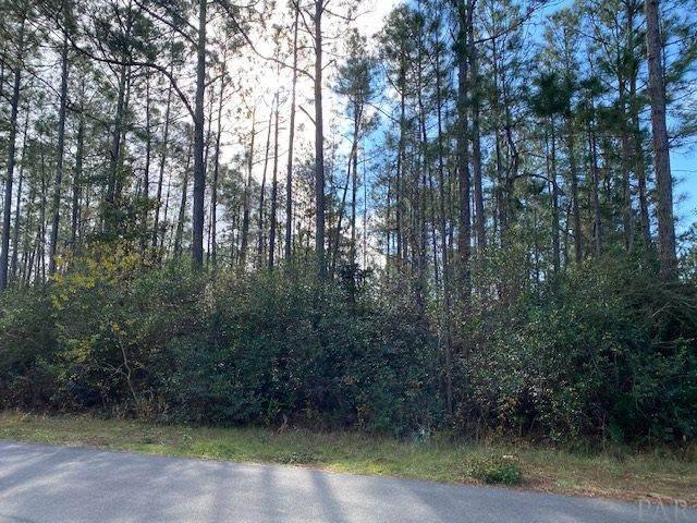 7241 Siesta Rd, Navarre, FL 32566 (MLS #582444) :: Coldwell Banker Coastal Realty