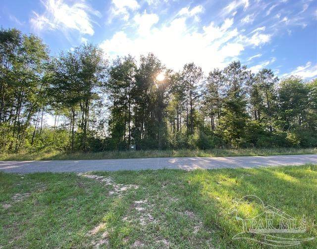 17 Bud Diamond Rd, Jay, FL 32565 (MLS #589662) :: Levin Rinke Realty