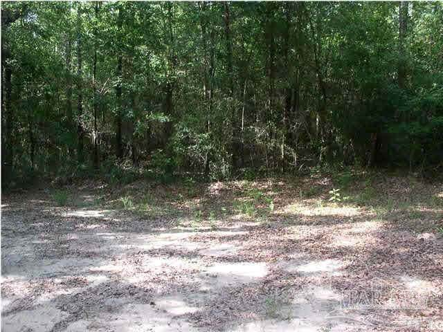 8500 Blk Richardson Rd, Molino, FL 32577 (MLS #597627) :: Connell & Company Realty, Inc.