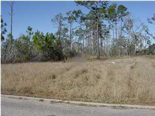 5169 Casa Grande Cir, Milton, FL 32583 (MLS #236596) :: Levin Rinke Realty