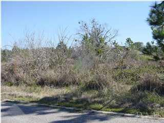 000 Casa Grande Cir, Milton, FL 32583 (MLS #236600) :: Levin Rinke Realty