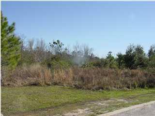 5161 Casa Grande Cir, Milton, FL 32583 (MLS #236601) :: Levin Rinke Realty