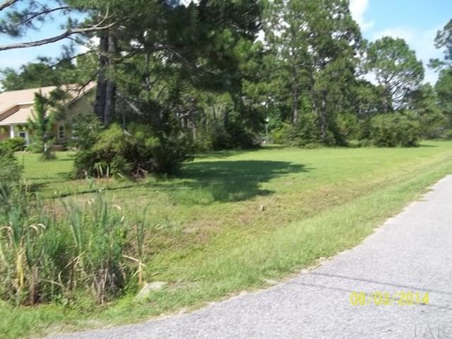 000 Pearson Rd, Milton, FL 32583 (MLS #482689) :: Levin Rinke Realty