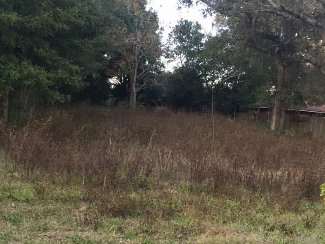 3200 N Hayne St, Pensacola, FL 32503 (MLS #528141) :: Coldwell Banker Coastal Realty