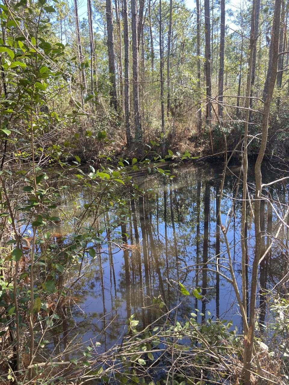 000 Mary Kitchens Rd - Photo 1