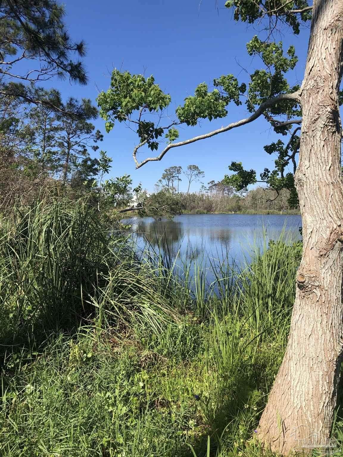 14 Mirror Lake Ct - Photo 1