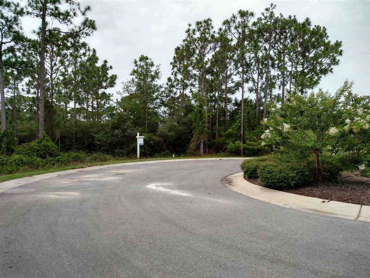 10520 Squall Line Rd - Photo 1