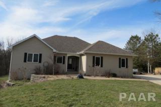 14825 W Fussner Road, Brimfield, IL 61517 (#1182043) :: Adam Merrick Real Estate