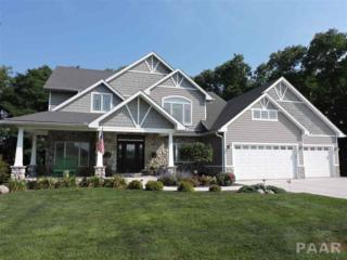 15225 Whitetail Crossing, Brimfield, IL 61517 (#1182071) :: Adam Merrick Real Estate