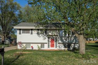 206 Jo Avenue, Germantown Hills, IL 61548 (#1183091) :: Adam Merrick Real Estate