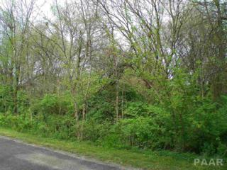 23 Yorkshire, Mackinaw, IL 61755 (#1183117) :: Adam Merrick Real Estate
