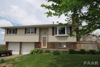 19515 W Peoria-Galesburg Trail, Brimfield, IL 61517 (#1183468) :: Adam Merrick Real Estate