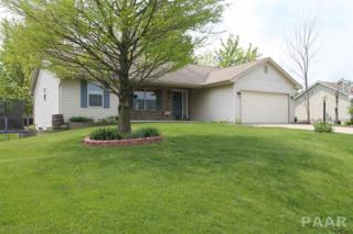 1269 Hickory Hills Road, Germantown Hills, IL 61548 (#1183604) :: Adam Merrick Real Estate
