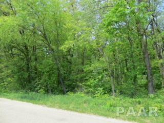 00 Tyrrell, Mackinaw, IL 61755 (#1183696) :: Adam Merrick Real Estate