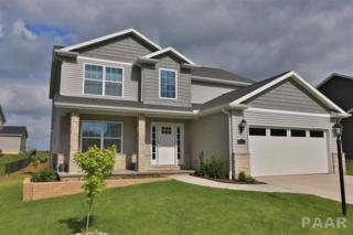 11330 N Sycamore Creek Drive, Dunlap, IL 61525 (#1183800) :: Adam Merrick Real Estate