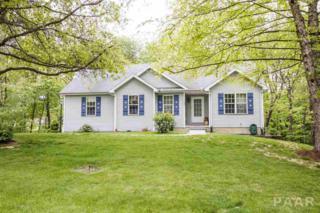 165 Heritage Drive, Mackinaw, IL 61755 (#1183825) :: Adam Merrick Real Estate