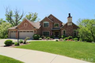 1109 S Copperpoint Drive, Dunlap, IL 61525 (#1183930) :: Adam Merrick Real Estate