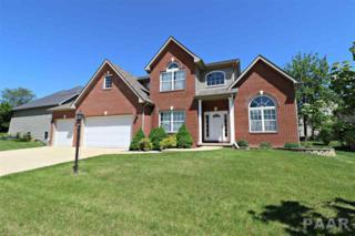 621 W Copperfield Drive, Dunlap, IL 61525 (#1183981) :: Adam Merrick Real Estate