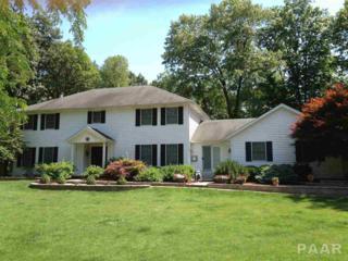 12314 N Wood Ridge Court, Dunlap, IL 61525 (#1184005) :: Adam Merrick Real Estate