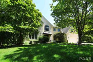 709 W Bridgetowne Court, Dunlap, IL 61525 (#1184052) :: Adam Merrick Real Estate