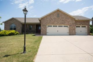 105 Cypress Point, Washington, IL 61571 (#1184115) :: Adam Merrick Real Estate