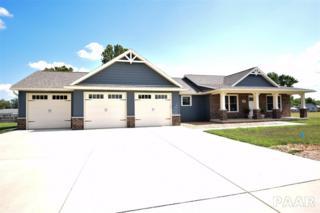 3804 E Camden Circle, Chillicothe, IL 61523 (#1184164) :: Adam Merrick Real Estate