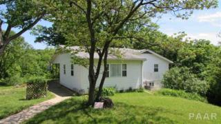 1270 S Woodland Knolls Lane, Metamora Germantown Hills, IL 61548 (#1184169) :: Adam Merrick Real Estate