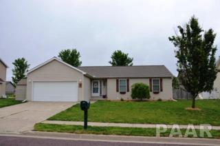 503 Park Trail, Mackinaw, IL 61755 (#1184000) :: Adam Merrick Real Estate