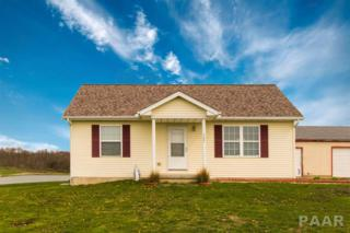 15425 W Southport Road, Brimfield, IL 61517 (#1181871) :: Adam Merrick Real Estate