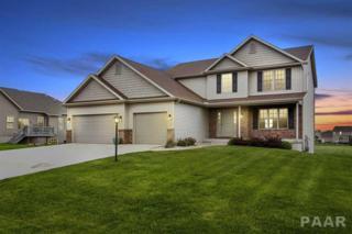 503 Somerset Drive, Germantown Hills, IL 61548 (#1183371) :: Adam Merrick Real Estate