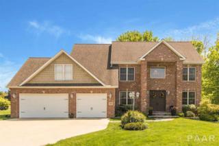1232 Winterberry Avenue, Germantown Hills, IL 61548 (#1183686) :: Adam Merrick Real Estate