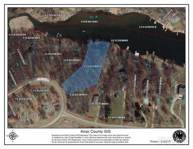 17 Locust Place, Dahinda, IL 61428 (#1161085) :: Adam Merrick Real Estate