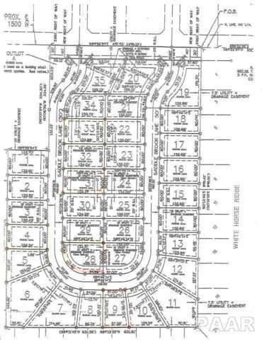 1105 Saddle Brook Lane, Metamora, IL 61548 (#1169850) :: Adam Merrick Real Estate