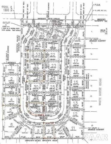 1205 Saddle Brook Lane, Metamora, IL 61548 (#1169855) :: Adam Merrick Real Estate