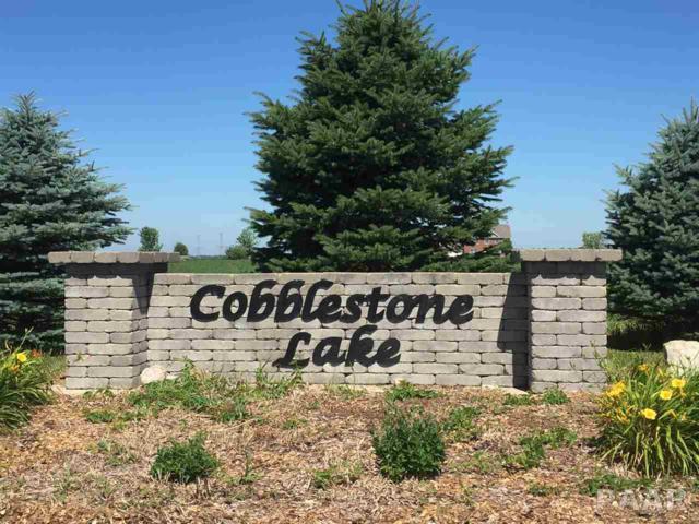 Lot 14 Cobblestone Lake Way, Eureka, IL 61530 (#1174578) :: Adam Merrick Real Estate