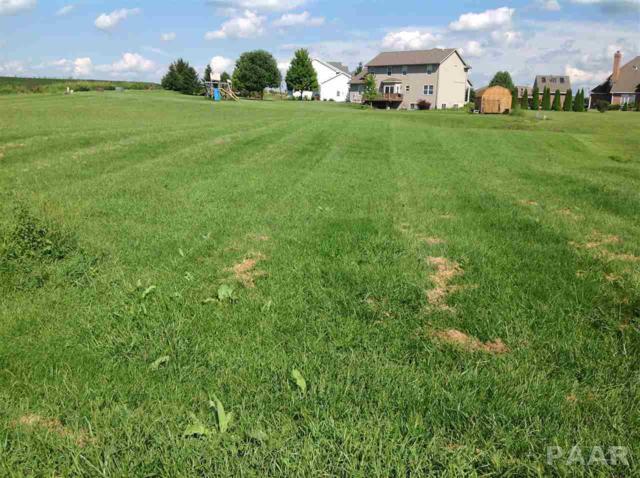 Lot 37 Washington, Metamora, IL 61548 (#1176538) :: Adam Merrick Real Estate