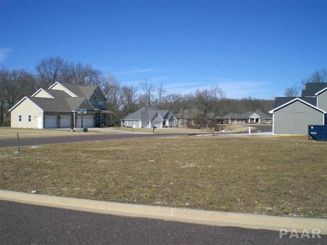 1801 Rustic Oak, Washington, IL 61571 (#1180915) :: Adam Merrick Real Estate
