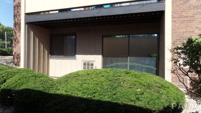 7007 N Terra Vista Drive #104, Peoria, IL 61614 (#1181652) :: Adam Merrick Real Estate