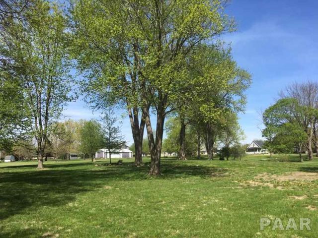 607 E Cypress Street, Elmwood, IL 61529 (#1183099) :: Adam Merrick Real Estate