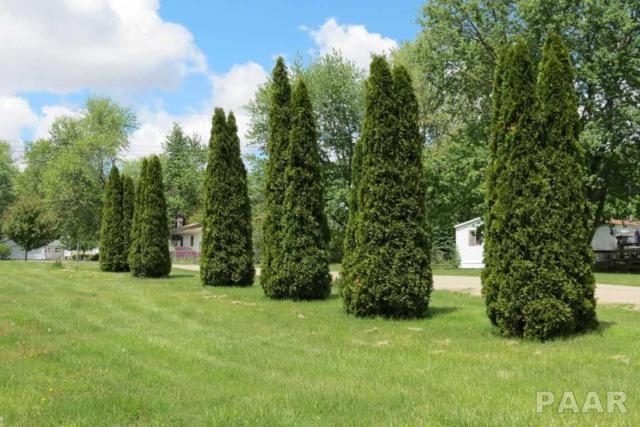 700 S Lilac Street, Elmwood, IL 61529 (#1183554) :: Adam Merrick Real Estate