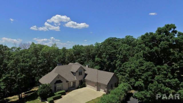 374 Ten Mile Creek Road, Germantown Hills, IL 61548 (#1184574) :: RE/MAX Preferred Choice