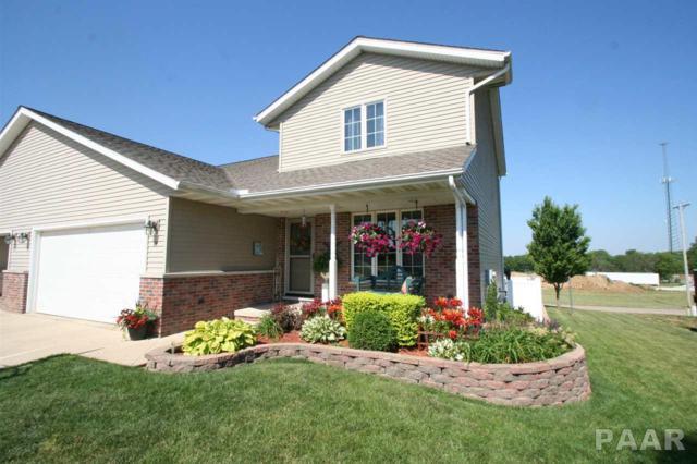 14 Thomas Court, Mackinaw, IL 61755 (#1184757) :: Adam Merrick Real Estate